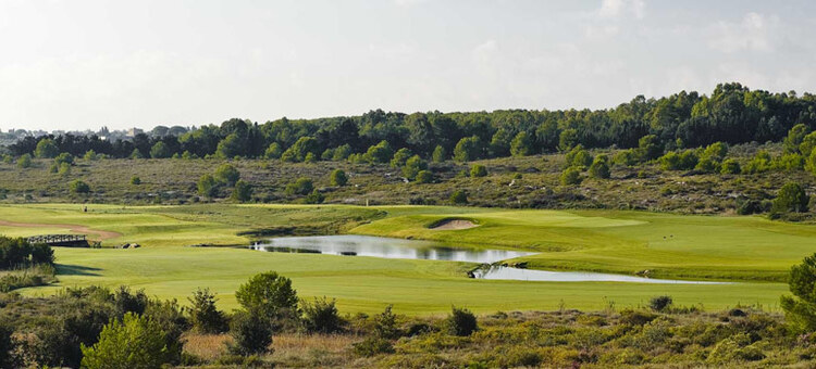 Green fees - Acaya Golf Club