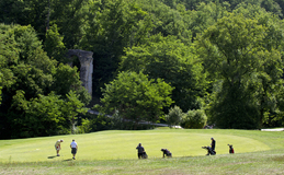 Green fees - Golf de Saintes